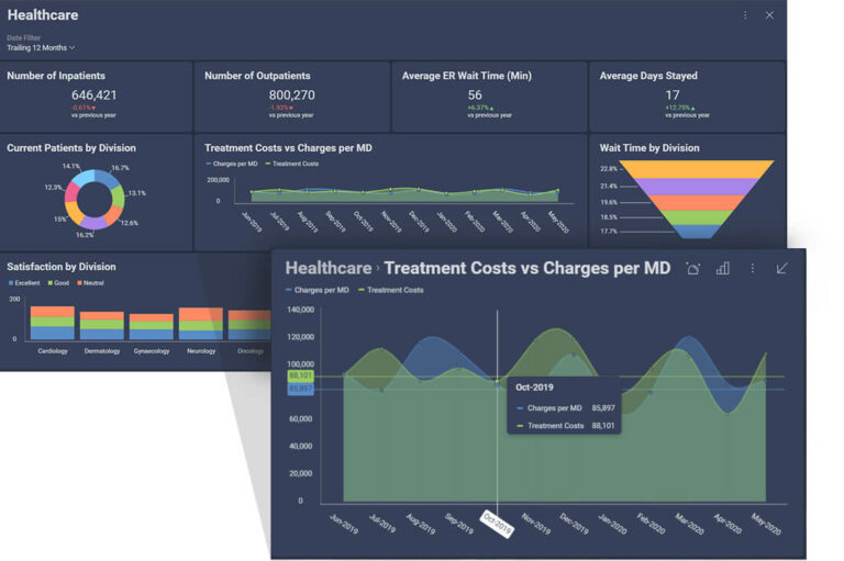 Reveal Data Visualization for Healthcare industry